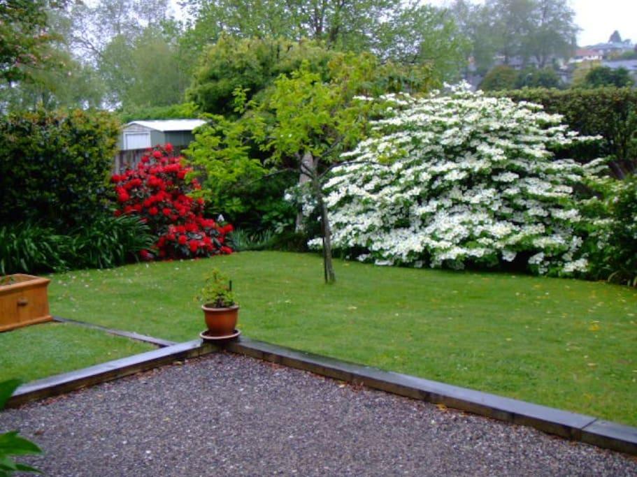 The garden in Spring.