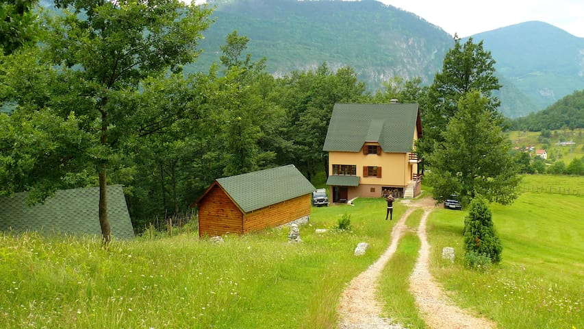 Accommodation in Tara Canyon - Pljevlja