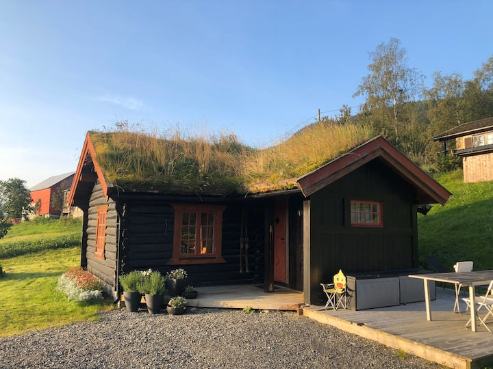 Koselig lite tømmerhus, hallingstua