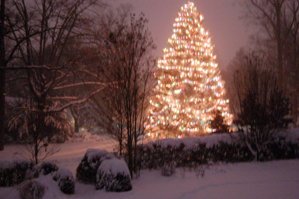 Christmas in Sudbrook- this is from our porch.