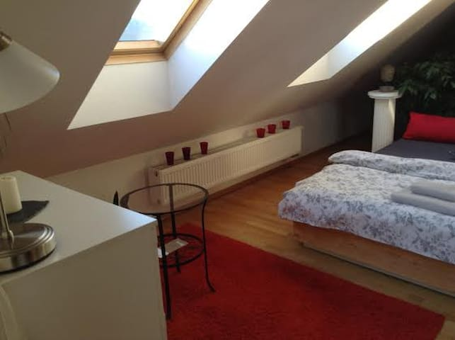 Lovely Room in Heart of Prague
