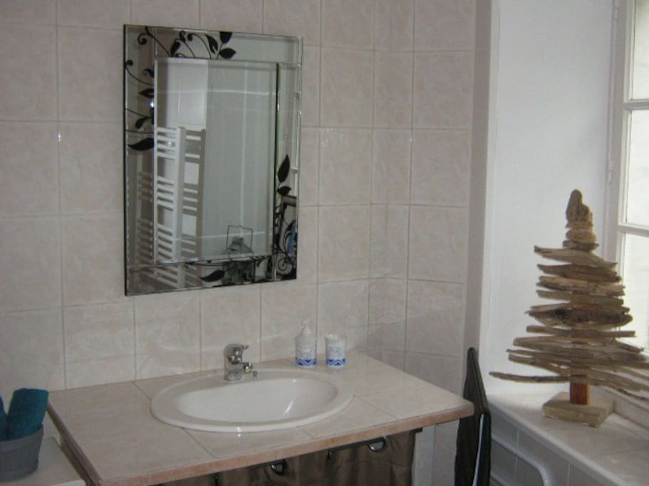 salle de bain réservée aux hôtes