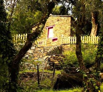 Refúgio no xisto - Serra da Lousã - Hus