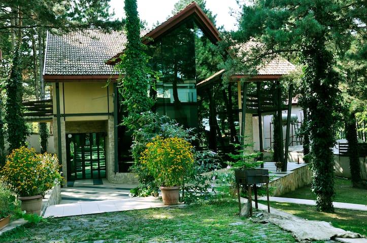 Villa in Pines • Очеровательная вила в соснах