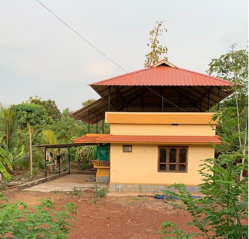Evergreen house