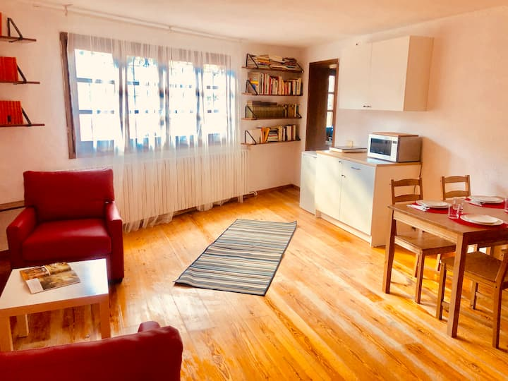 Studio-apartment with kitchenette