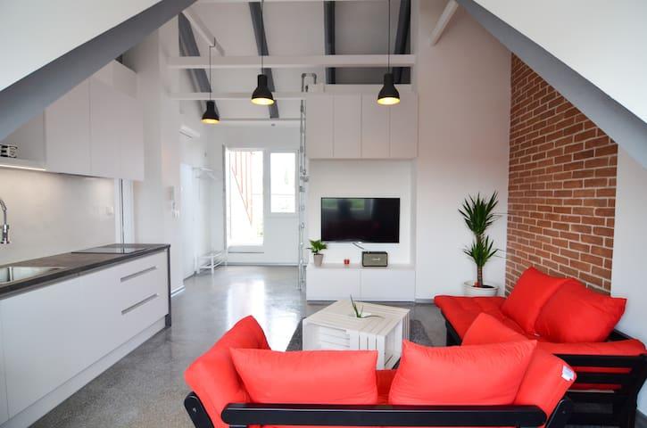 Stylish industrial art attic apartment