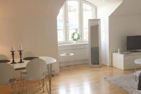 Large cozy apartment - Göteborg - Apartmen