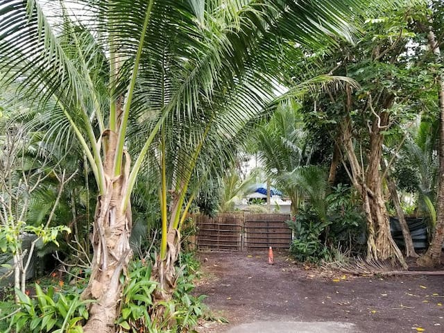 Coconut Heaven Beach House Pāhoa