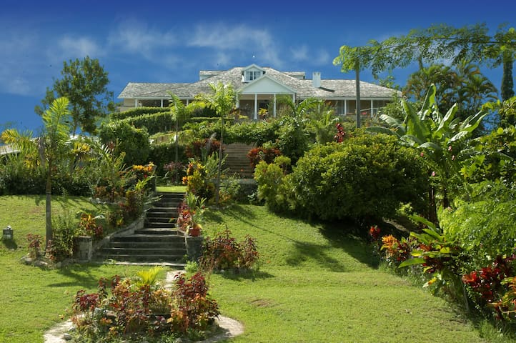 Liberty Hill Guest House & Spa - Lime Hall, St. Ann, Jamaica - Bed & Breakfast