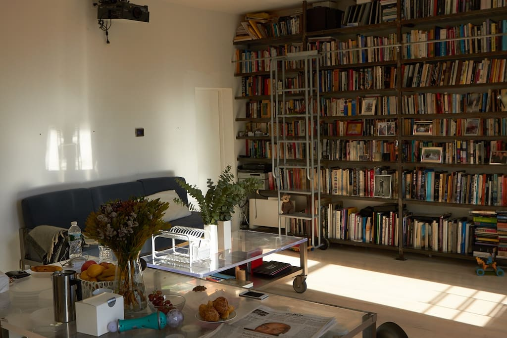 Lots of light, floor to ceiling bookshelf