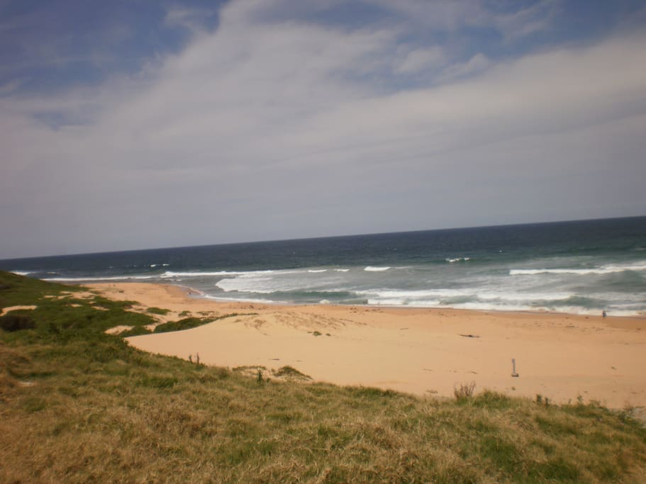 Nth Shelly 5 min walk dog exercise beach/great surfing/fishing