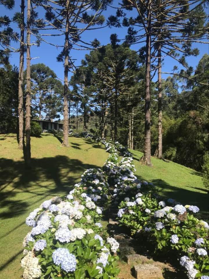 Casa Caminho das Hortênsias isolamento e natureza