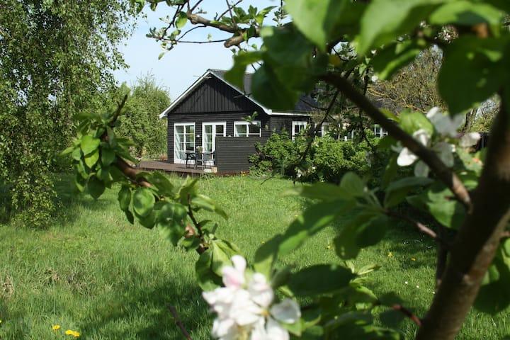 Ferielejlighed i ombygget lade på Thurø