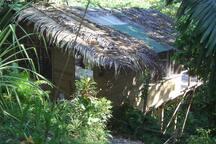 Nestled in lush rain forest