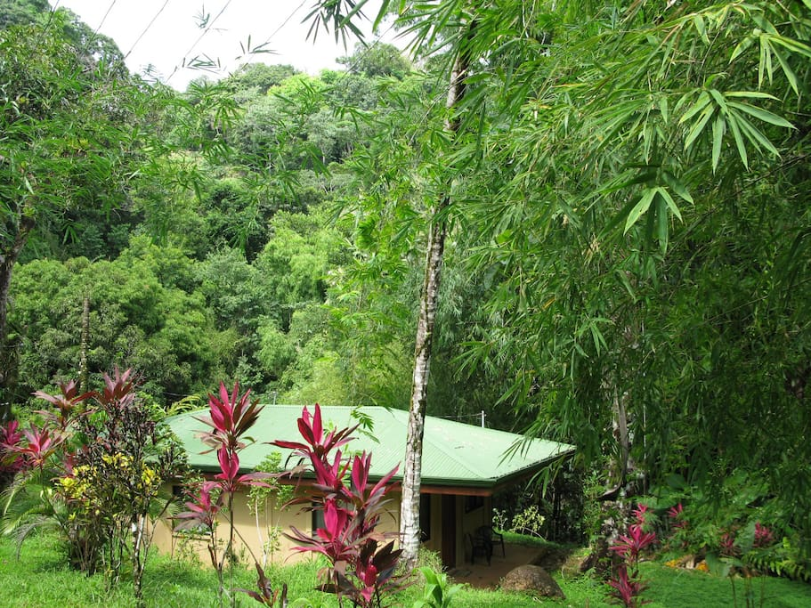 JUNGLE-BEACH 2BD BUNGALOW