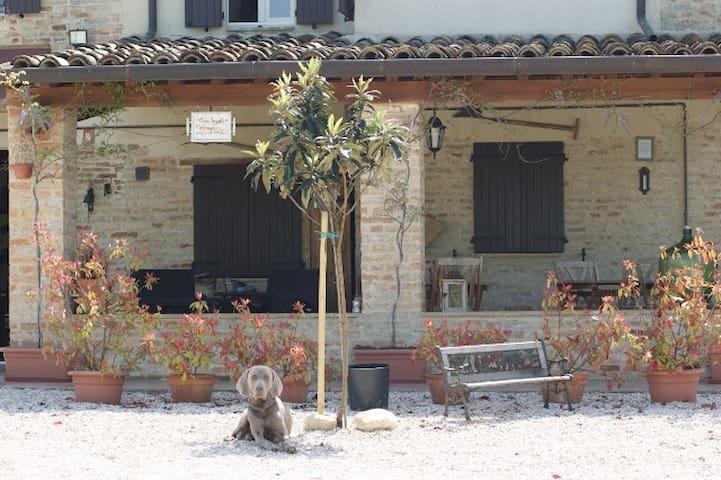 Casa Sorgente , prive kamers - San Costanzo - House