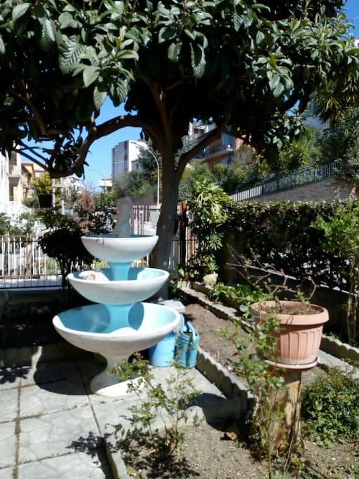 la fontana sotto il nespolo
