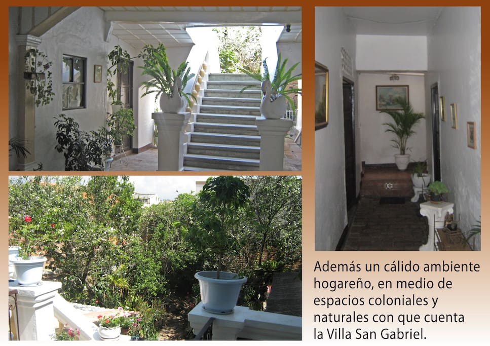 Prices Apartments For Rent In Medellin Monthly