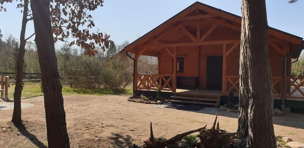 Chata na polanie-Dom pod sosną