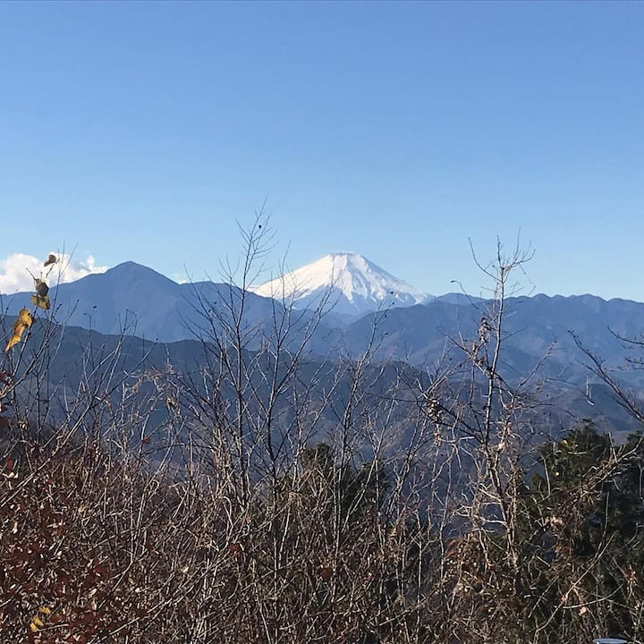 Mt. Fuji, from Mt. Takao (fine day)