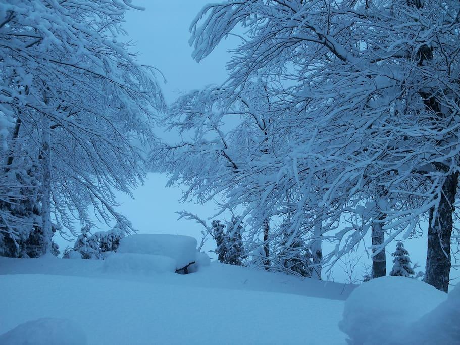 Devant le chalet en hiver!