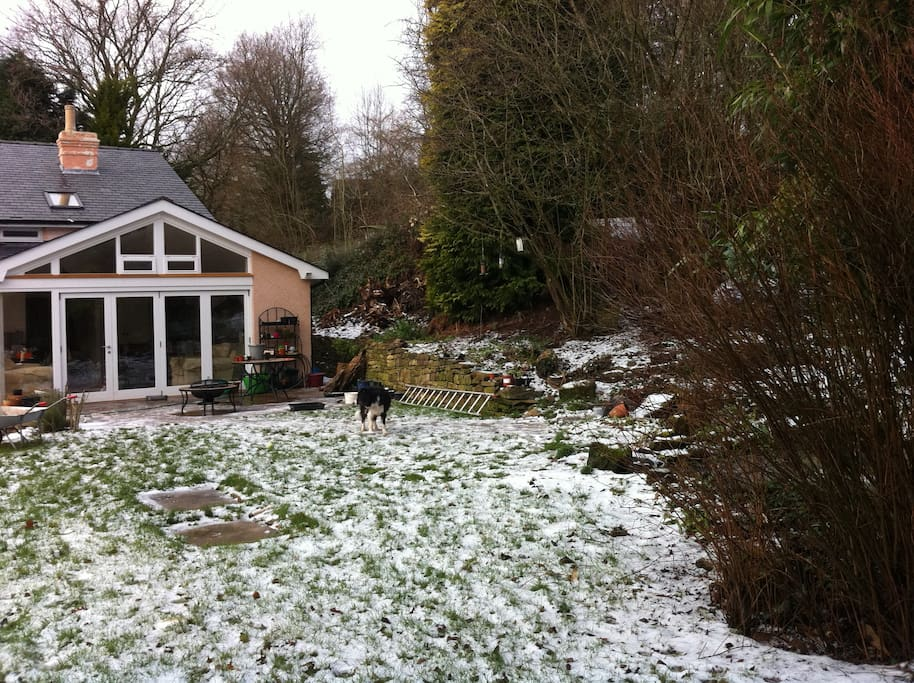 The front garden in winter looking towards kitchen/garden room