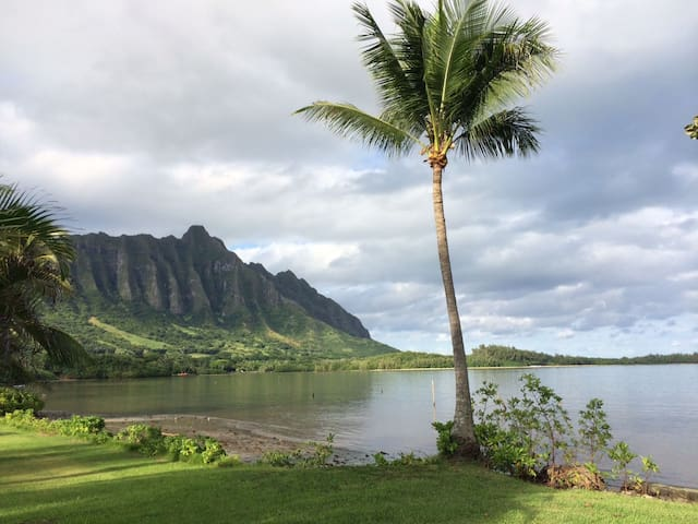 Kaneohe Bay Hawaii Rooms For Rent
