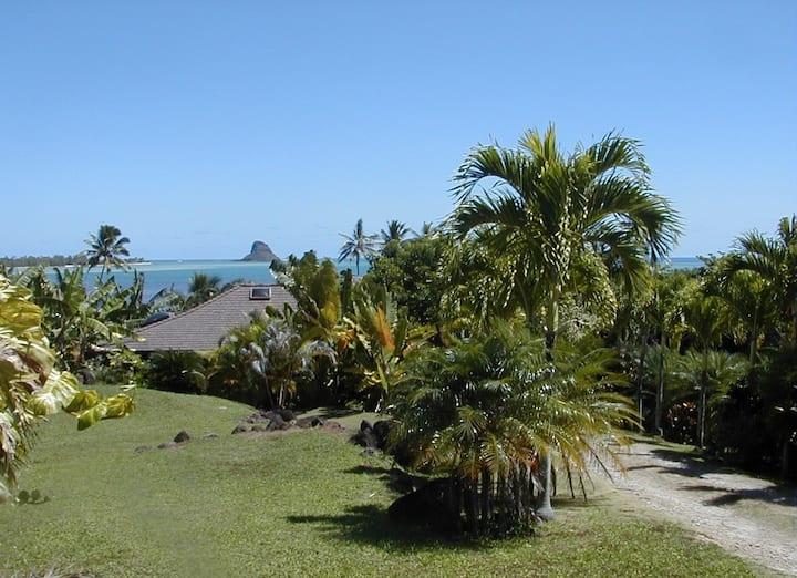 Kaneohe Bayside Cottage Retreat