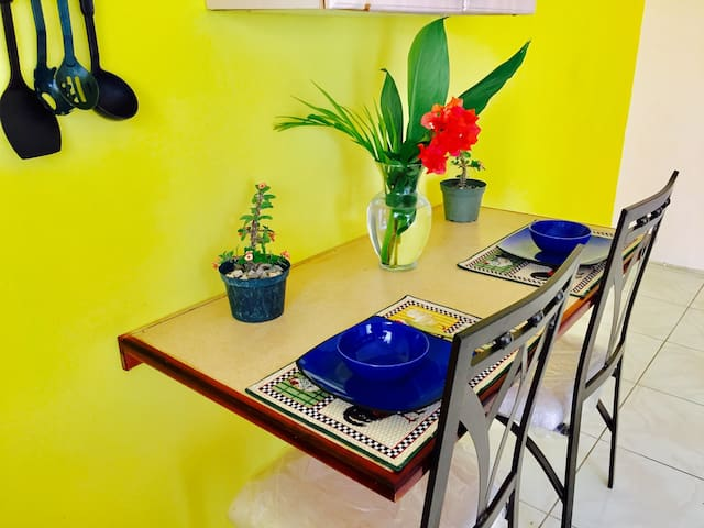 SPRING PALM 1 BEDROOM  APARTMENT/POOL