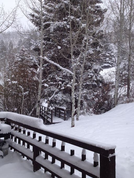 Front Yard on a powder day!