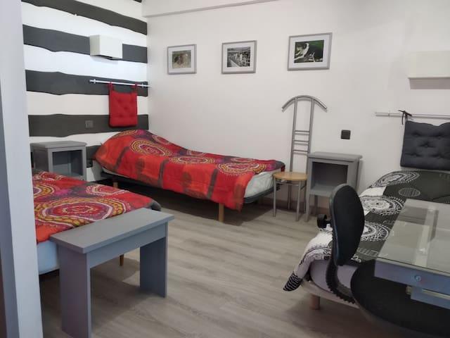 Chambre à 3 lits 1 place avec salle de bain privative