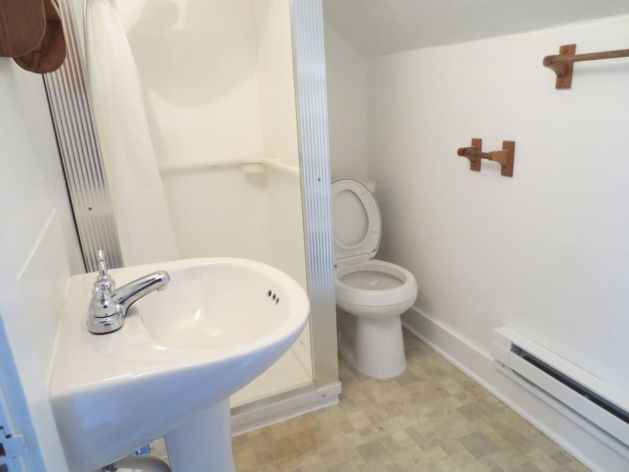New bathroom with a new Kholer toilet!