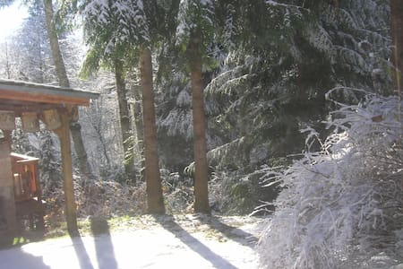 Mt. Hood Forest Sanctuary Studio