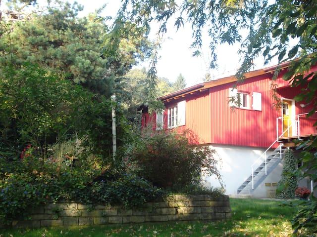 Poolhaus im Grünen - Reinach - Loft