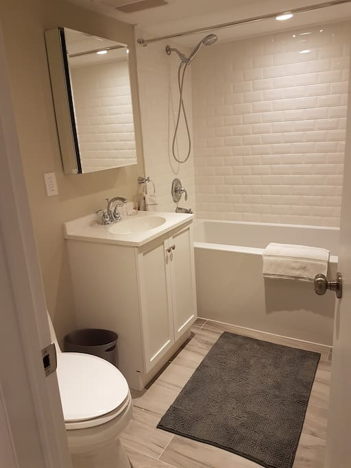 Private Bathroom - toilet, sink, bathtub and shower. Vanity cabinet and space below for your belongings.