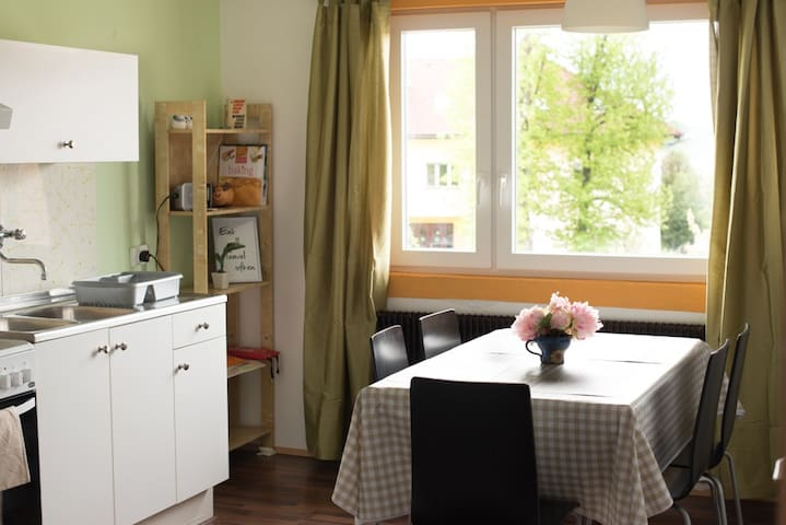 Light and Airy FLAT- lovely VIEW - Novo mesto - Apartamento