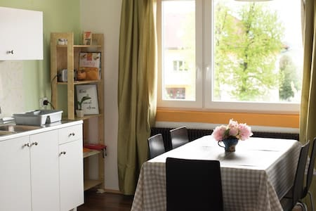 Light and Airy FLAT- lovely VIEW - Novo mesto - Квартира