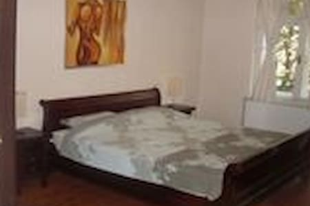 Spacious Dositejeva apartment, center, Dorcol - Beograd - 公寓