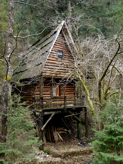 One of the cosy, ecological bungalows to rent
