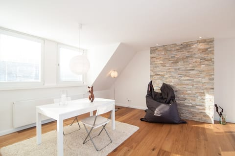 Beautiful Apartement by the RHINE