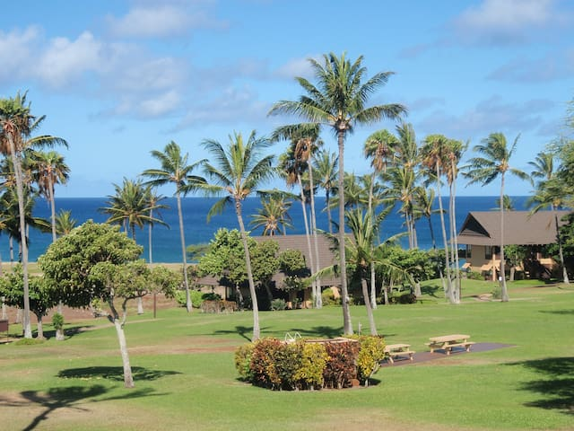 A stroll to beach from this studio - Maunaloa - Condominium