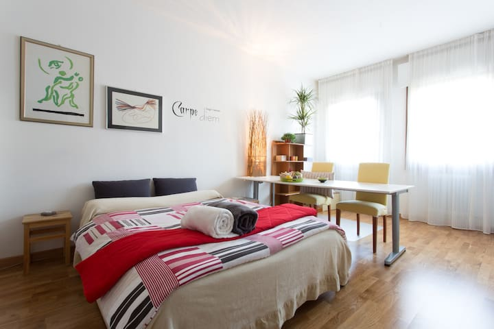 Huge room:Explore VENICE&TREVISO - Mogliano Veneto - House
