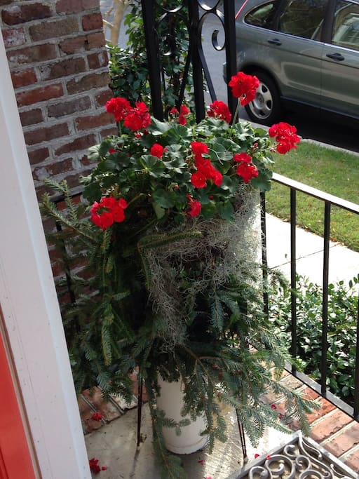 Geraniums love this porch...your welcome marker