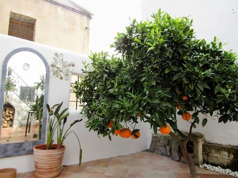 Casita Jardin is a little townhouse with a garden
