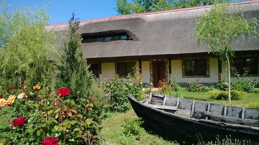Thatched roof holiday cottage in the Danube Delta