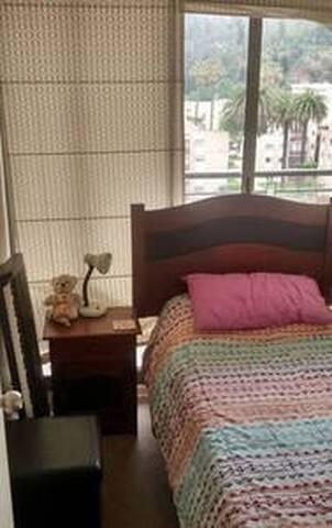 Habitación cama 1 plaza viña centro.