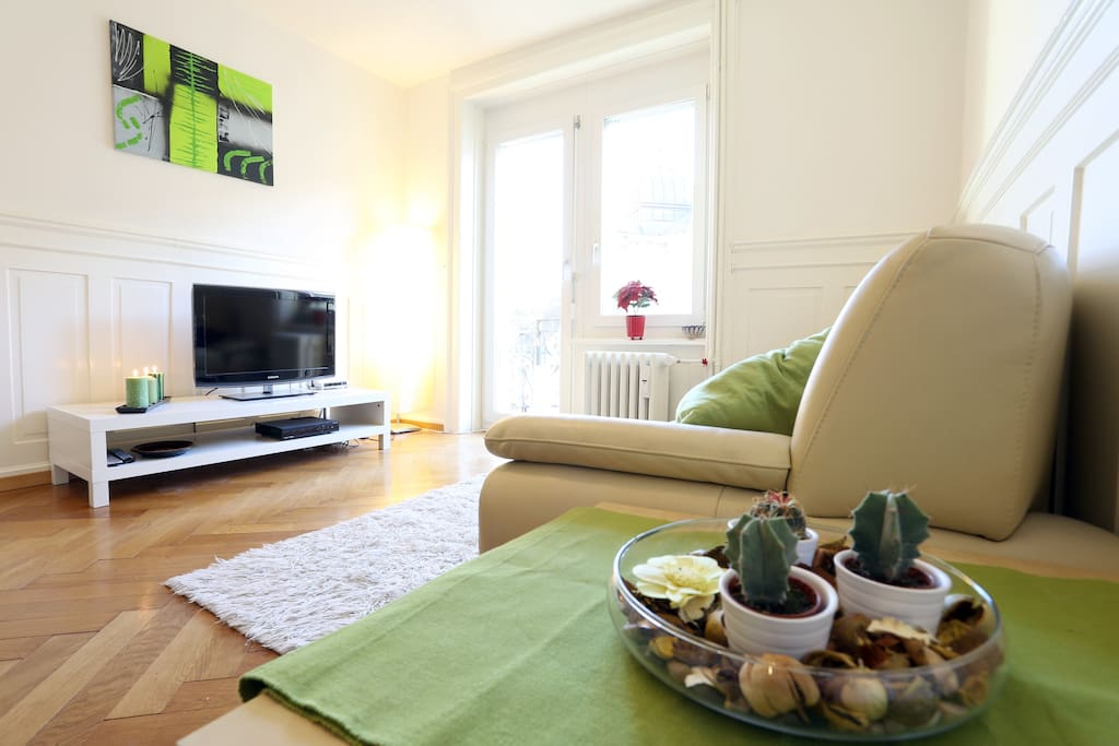 Beautiful Appartment Near Lake Apartments For Rent In