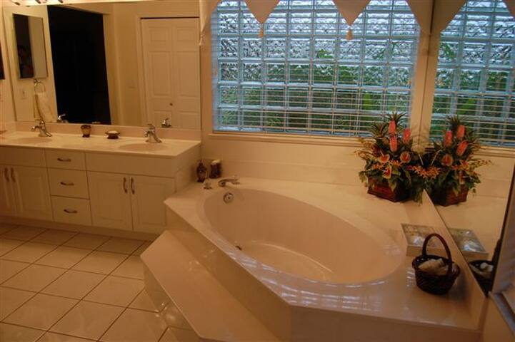 Master bath separate tub and walk in shower double sinks
