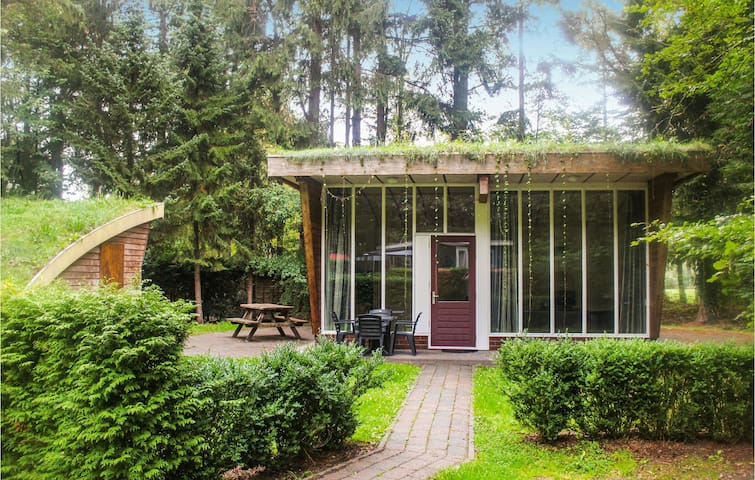 Holiday cottage with 2 bedrooms on 50m² in Vledder